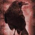 raven1s