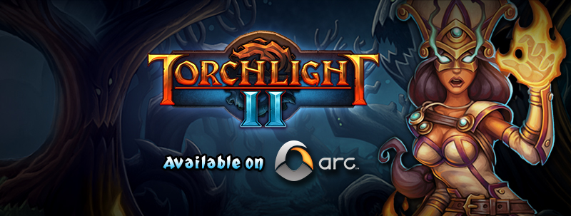 torchlight 2 how to play multiplayer