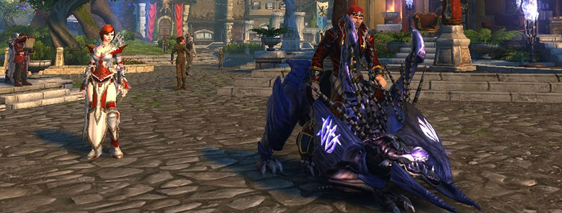how to get companions neverwinter