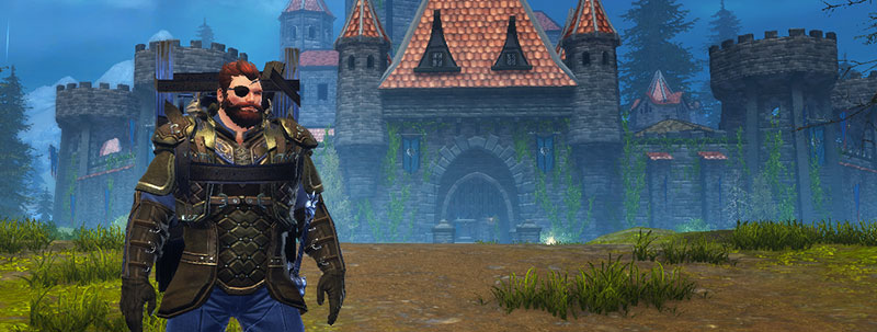new companion the siege master reports in neverwinter. Black Bedroom Furniture Sets. Home Design Ideas